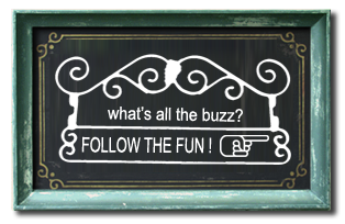 Follow the fun!